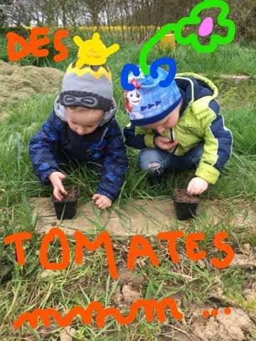 noa aloyse tomate 2