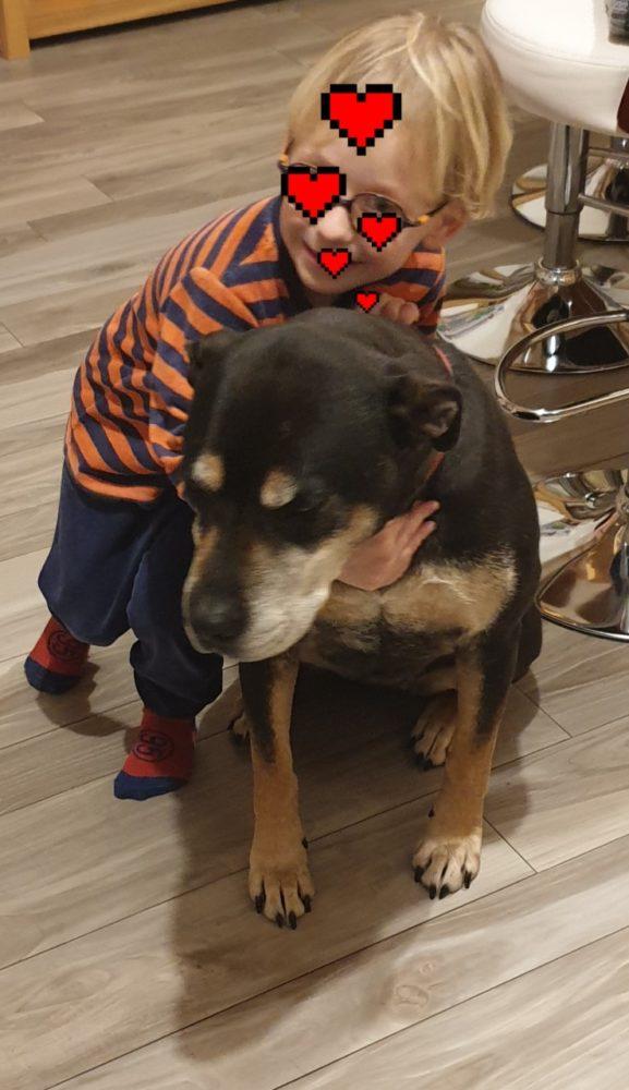 peio chien 2